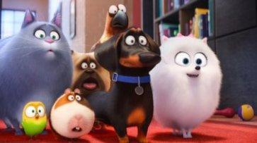 Презентуємо перший трейлер анімаційної комедії «Секрети домашніх тварин 2» - «Мир»