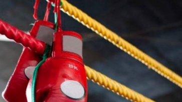 Украинки завоевали медали на ЧМ по боксу - «Культура»