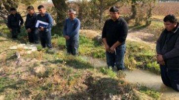 Вице-премьера Узбекистана уволили после издевательств над фермерами - «Происшествия»