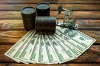 О чем договорились страны ОПЕК+? | Экономика | Деньги - «Происшествия»