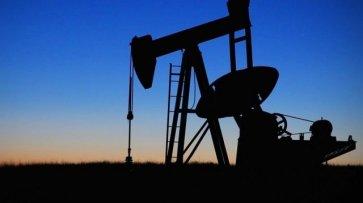 Цена нефти Brent выросла на 5% после информации о договоренности ОПЕК - «Происшествия»