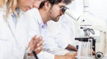 Ученые нашли способ продлить жизнь мозга - «Экономика»
