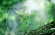 В прокуратуре республики состоялось заседание межведомственной рабочей группы по вопросам исполнения законодательства в области охраны окружающей природной среды