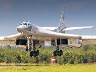 Die Welt (Германия): новый «Конкорд»? Путин хочет переделать сверхзвуковой бомбардировщик в пассажирский самолет - «ЭКОНОМИКА»