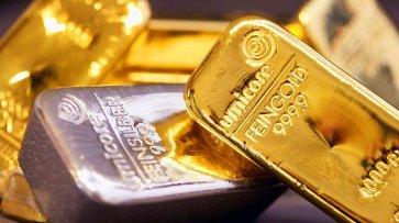 Француз получил по почте золотые слитки вместо заказанного для жены купальника - «Новости Дня»