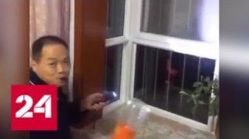 Китайцы придумали оригинальный способ обойти запрет на использование пиротехники - Россия 24 - (видео)