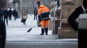 Милонов предложил россиянам самим убирать снег с улиц, но не за просто так