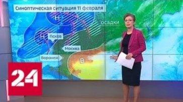 """""""Погода 24"""": на Русской равнине начинается новая оттепель - Россия 24 - (видео)"""