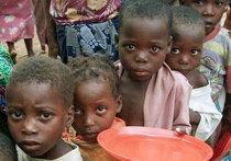 VivAfrik (Сенегал): Африка не может позволить себе пропустить генетическую революцию - «Наука»
